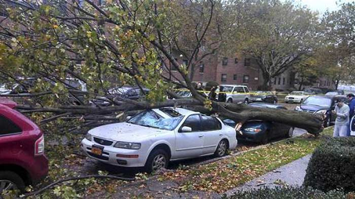 Ураган Сэнди. В парках Нью-Йорка