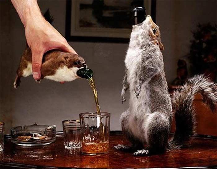 Пиво «Конец истории»