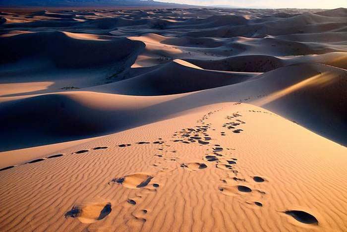 Пустыня расположенная на территории
