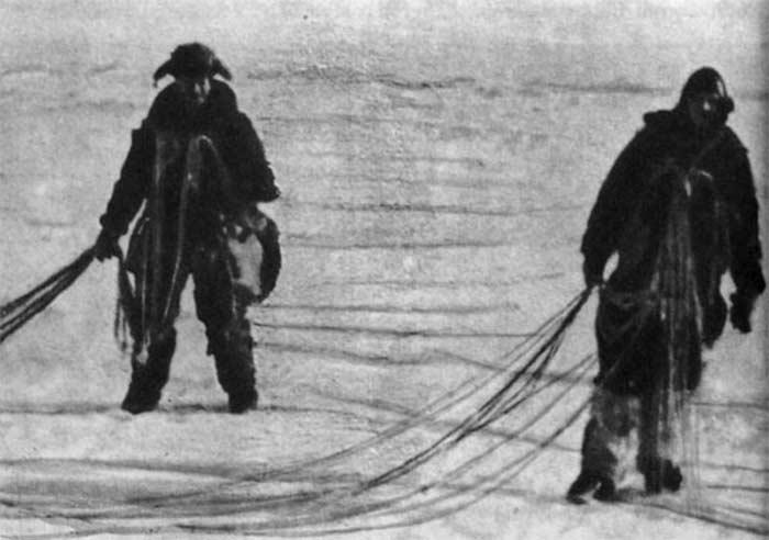 Виталий Волович и Андрей Медведев