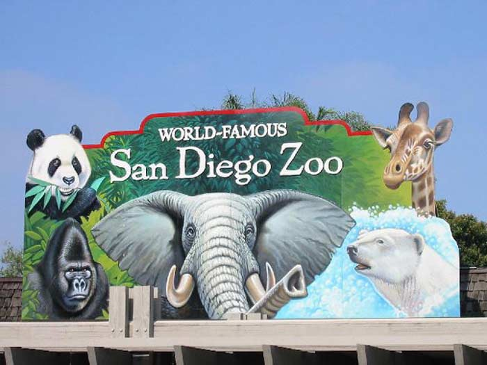 Зоопарк Сан-Диего (США)