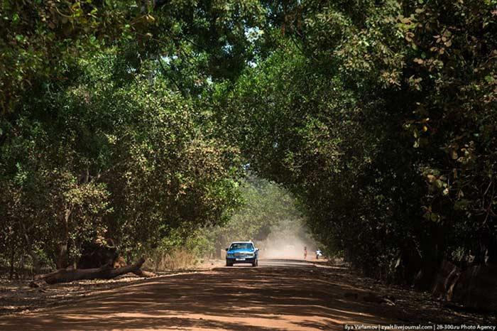 Гвинея дороги