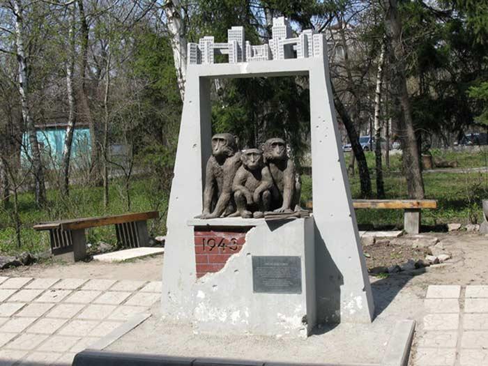 Трио обезьян в Харьковском зоопарке