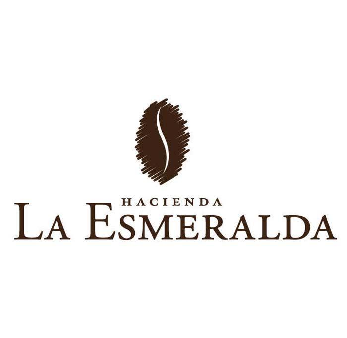Топ 10 Самых дорогих сортов кофе. Hacienda La Esmeralda (Панама)