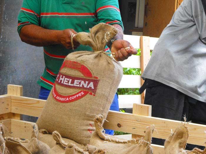 Топ 10 Самых дорогих сортов кофе. Island of St Helena Coffee Company