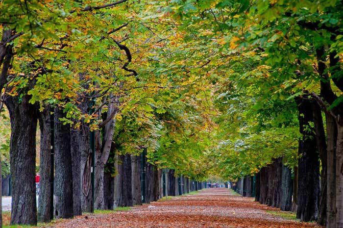 Парк Пратер (Вена, Австрия)