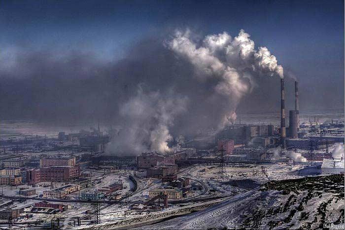 Бактерии, очищающие загрязненную среду
