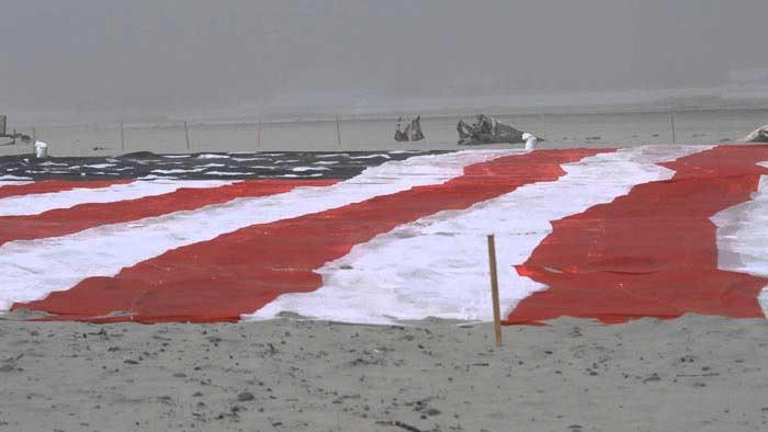 Мега-Флаг (Mega-Flag)
