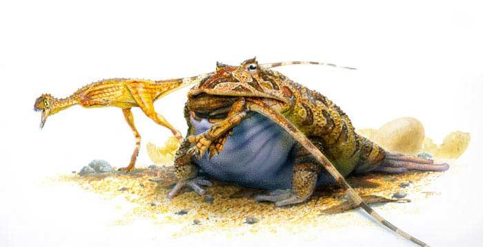 Лягушка Веельзевула