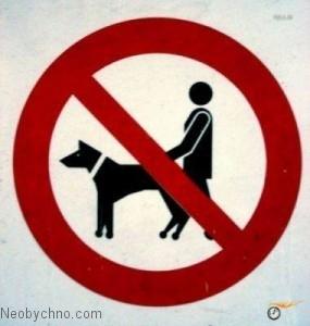 С собаками не гулять