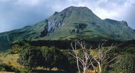 Вулкан Монтань-Пеле