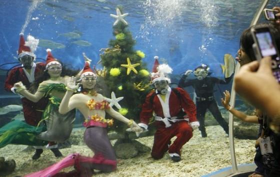 Подводная новогодняя елка
