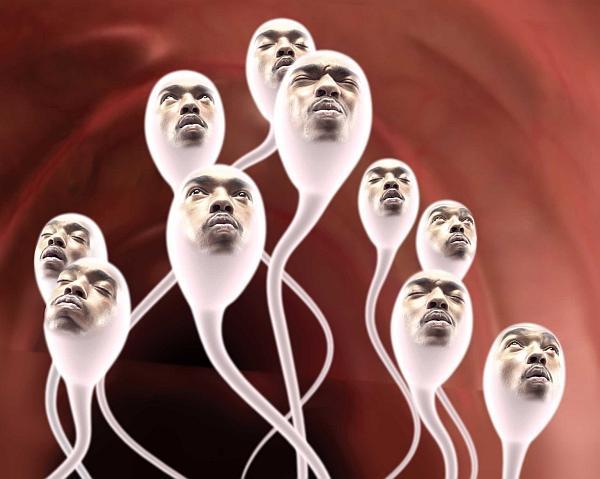 Сперма за всю жизнь