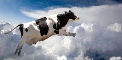 Корова с неба