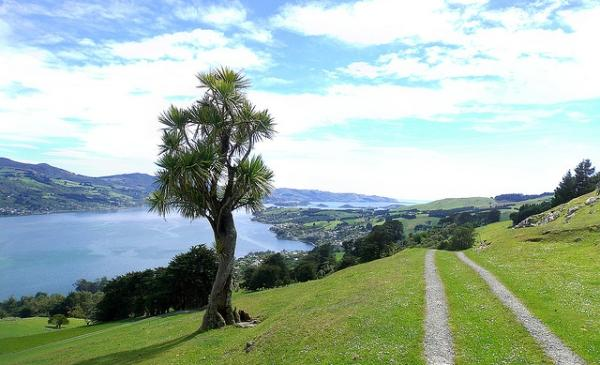Велосипедный маршрут: Полуостров Отаго, Новая Зеландия