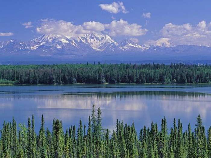Топ 10 самые большие реки в России