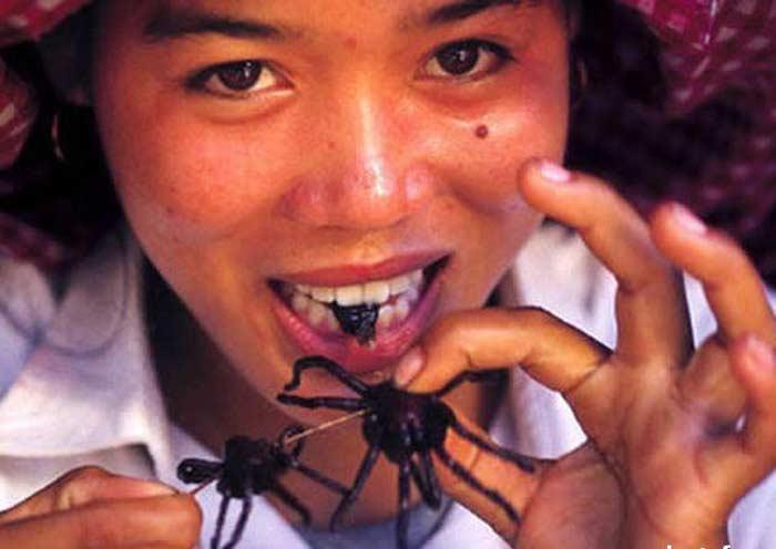 Жаренный тарантул