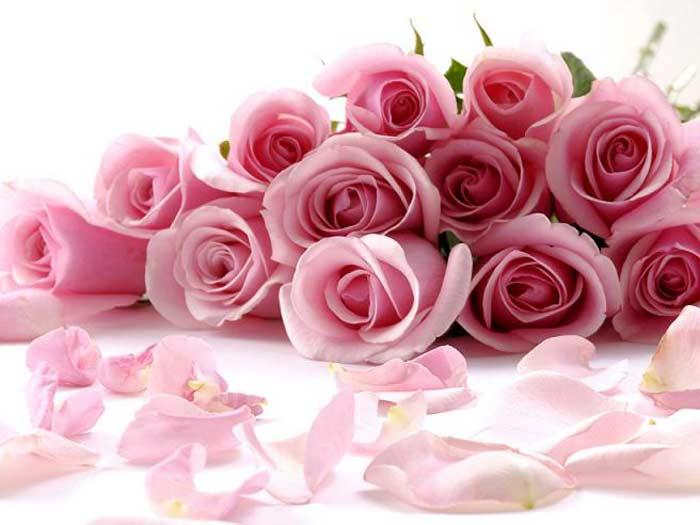 http://dekatop.com/wp-content/uploads/2012/06/flowers_01.jpg