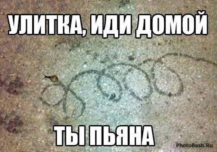 Ты пьяна, иди домой