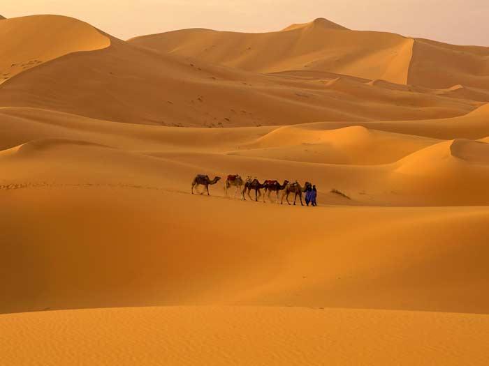 Сахара - самая большая пустыня в мире