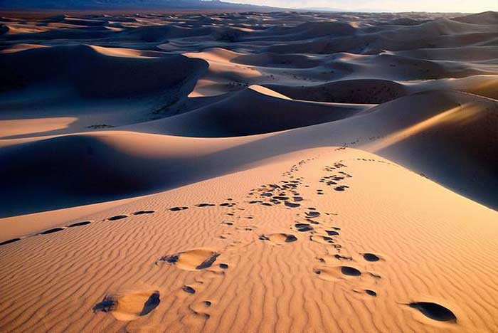 Топ 10 самых больших пустынь мира