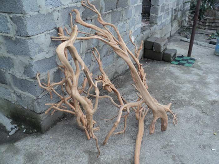 Мебель из корней ели