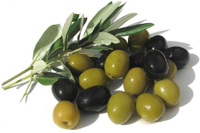 Плод оливы горький