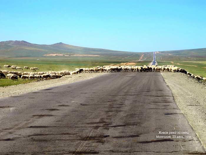 Монголия дороги