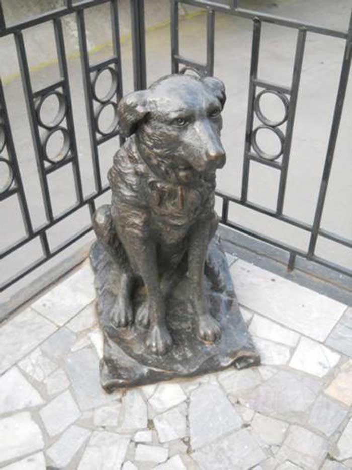 Памятник бездомный собаке Пальме - другу теннисистов (пл. Свободы, 4)