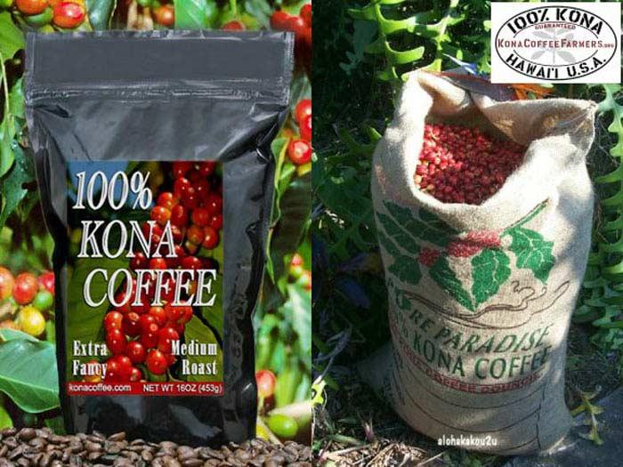 Топ 10 Самых дорогих сортов кофе. Kona Coffee