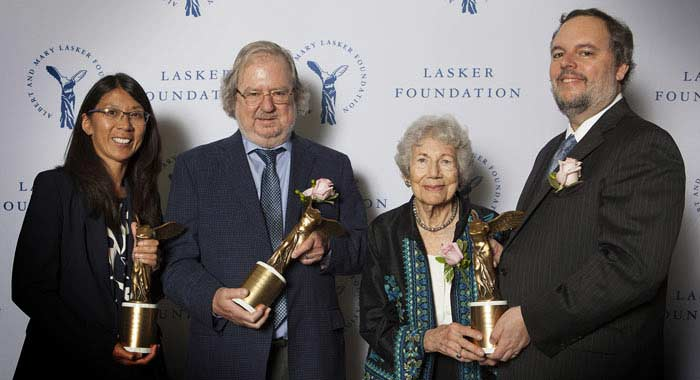 Ласкеровская премия