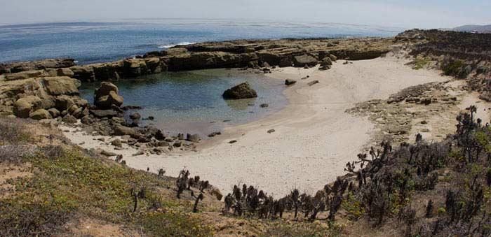 Хуана-Мария, остров Сан Николас