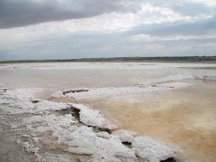 В море сконцентрированы в основном сульфаты и карбонаты
