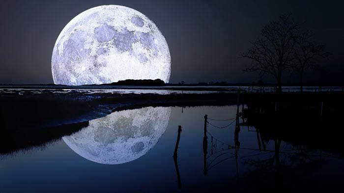 Кровожадная луна