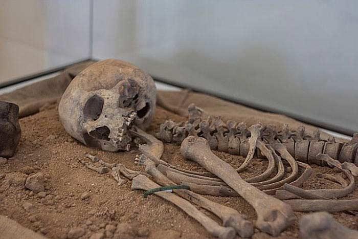 обнаружены ранее неизвестные науке черепа людей