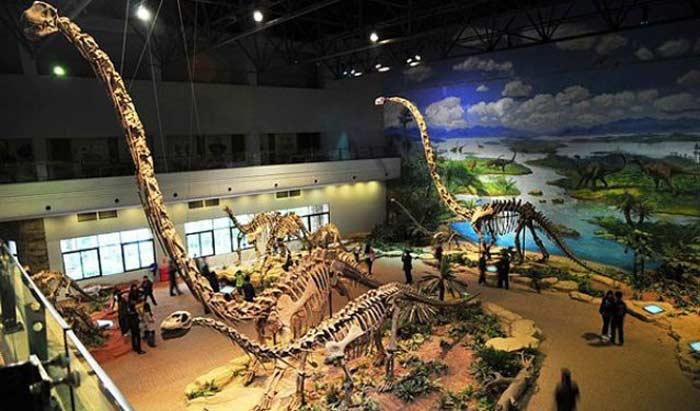 Музей динозавров Да Шанпу