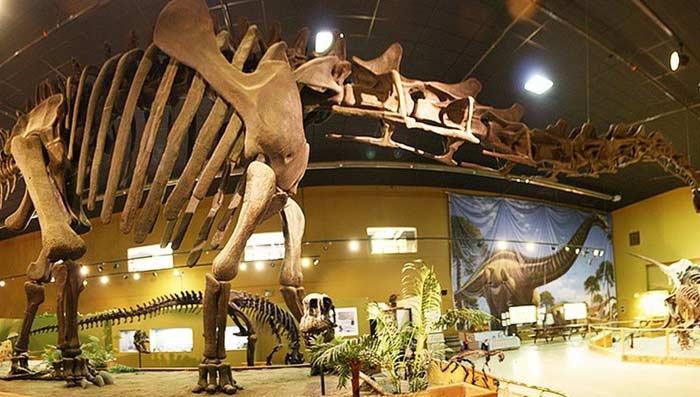 Центр динозавров Вайоминга
