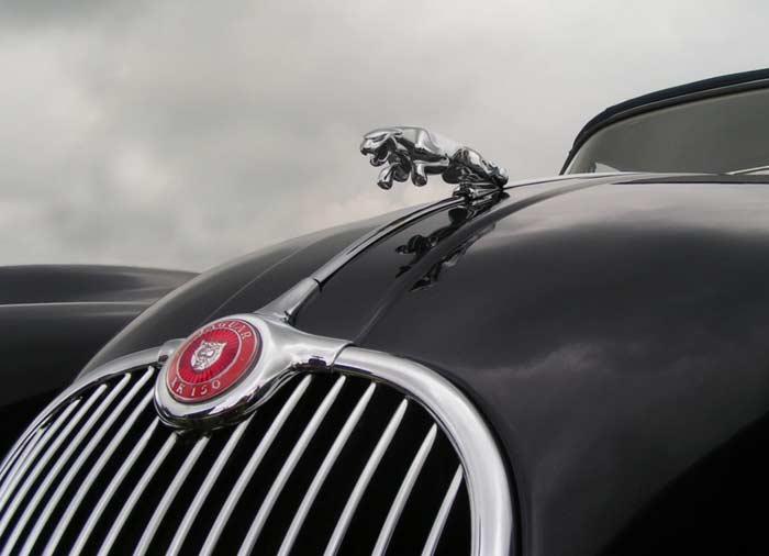 Эмблема на капоте Jaguar