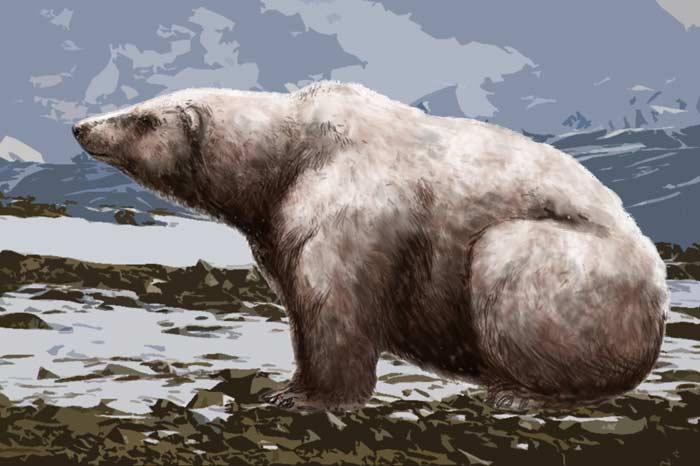 Гигантский белый медведь