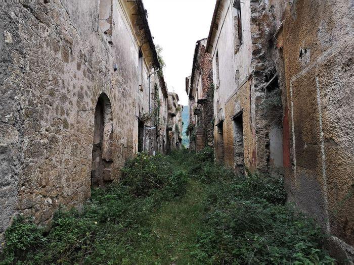 Токко-Каудио, Кампания