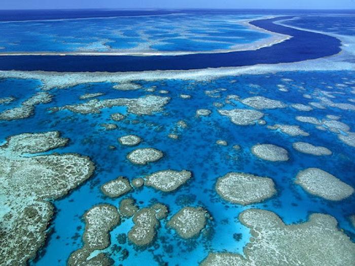 Большой риф